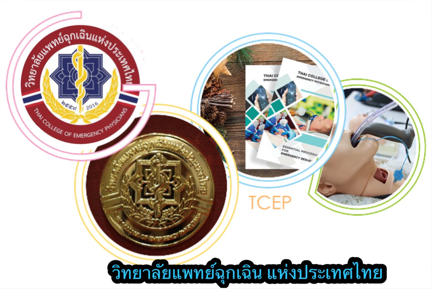 Thai College of Emergency Physicians